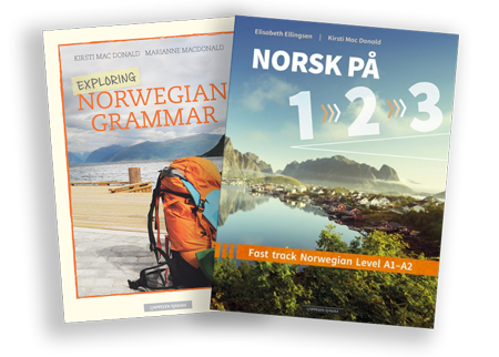 Norwegian language course - beginner level