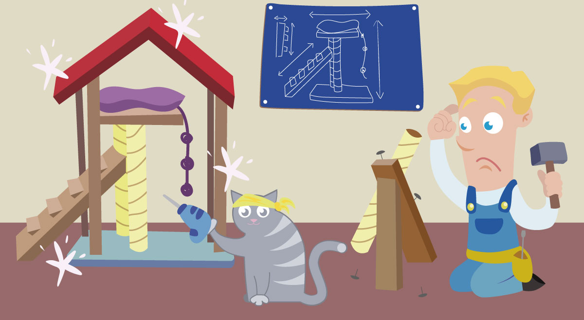 Uke 17 tor and cat building color