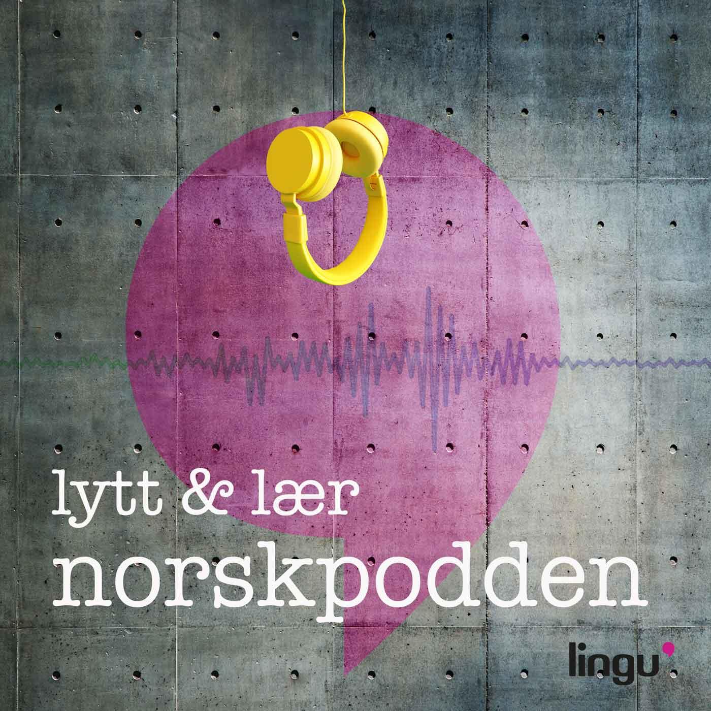 Presentasjonsteknikk - Lær hvordan du kan forberede deg best mulig til å holde en presentasjon på norsk.